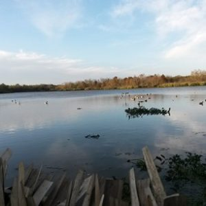 Duck hunting tips from a waterfowl guide
