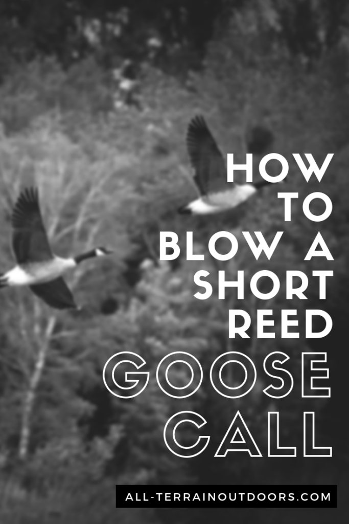 how to blow a short reed goose call