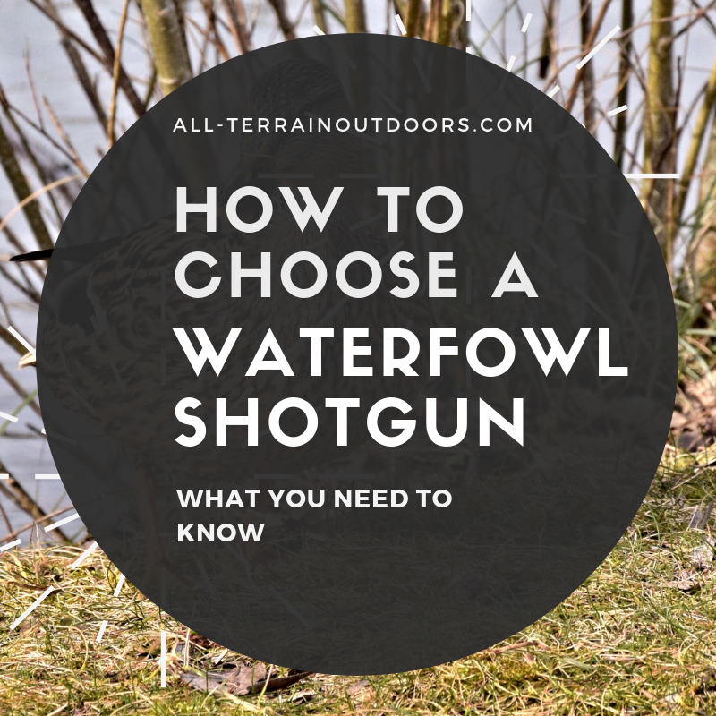 how to choose a waterfowl shotgun