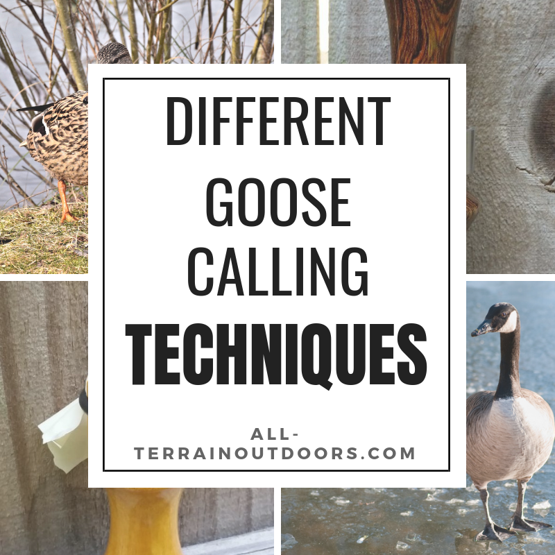 different goose calling techniques