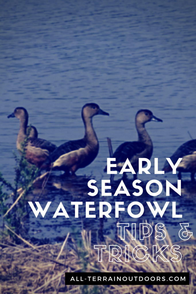early season waterfowl