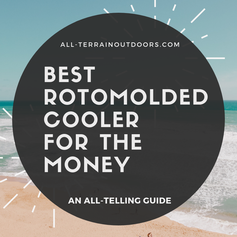 best rotomolded cooler for the money