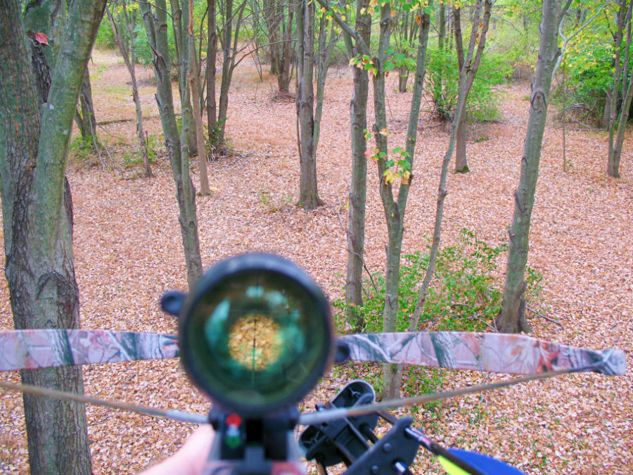 do i need a rangefinder for bow hunting