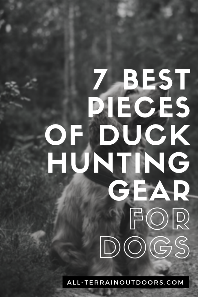 duck hunting gear for dogs