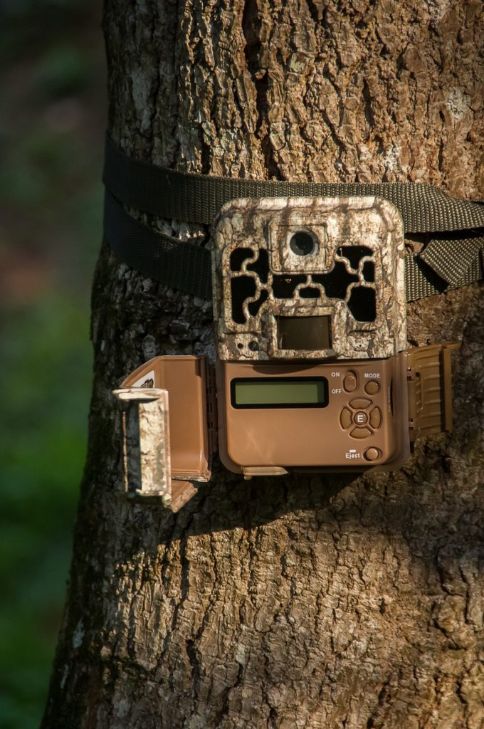 trail cameras that send pictures to your phone